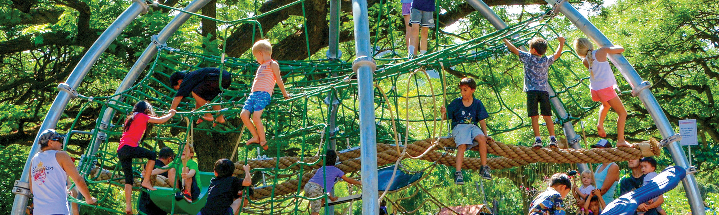 Swings and climbing for all ages at the Honolulu Zoo