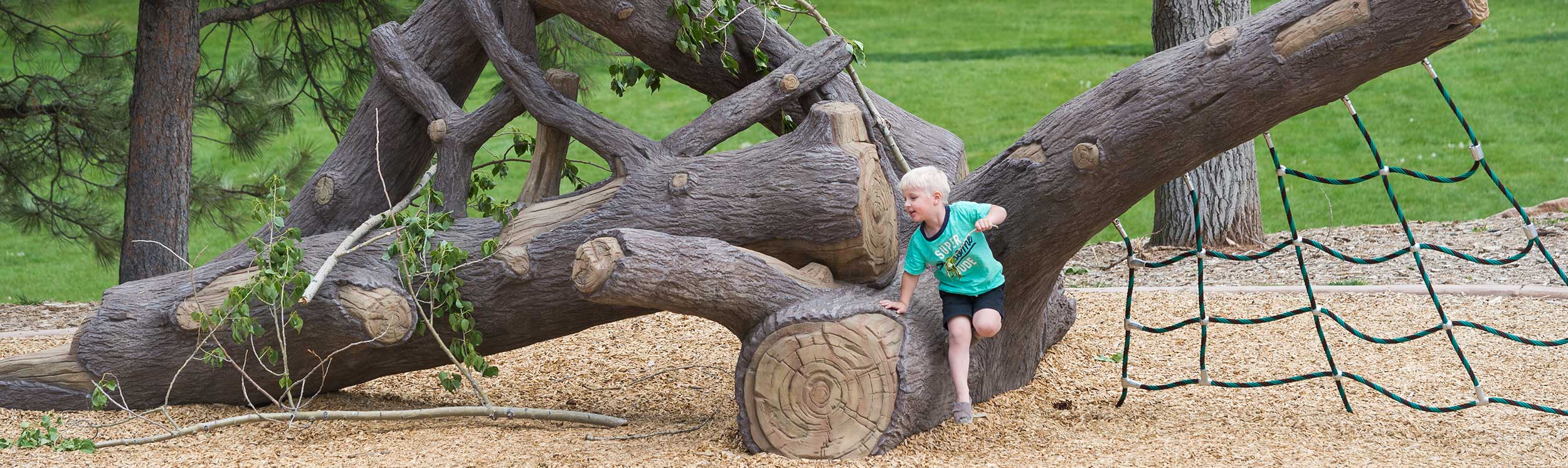 Natural looking sculpted tree play structure for climbing