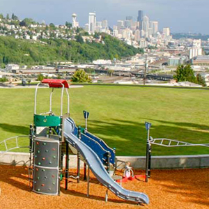 slide and tower play structure