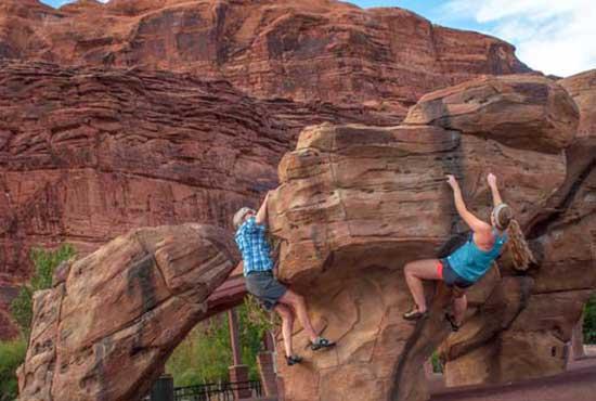 Rock Climbing Adult Playground